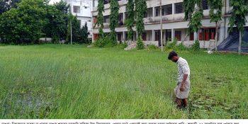 Magura Girls School Jolaboddhota Pic 1